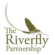 Riverfly